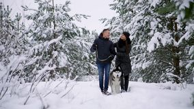 Leute auf einem Weg im Mann des Wald A und in einem Hund des sibirischen Huskys ziehen einen Pferdeschlitten mit einem Kind im Sc stock footage