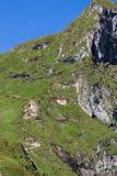 Leute auf Fagaras-Bergen Stockfotografie