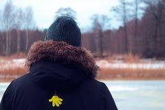 Leute auf Teich im Winter Stockfoto