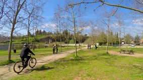 Leute bei Forest Park On Sunny Day stock footage