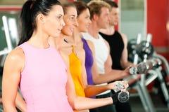 Leute in der Gymnastik trainierend mit Dumbbells Stockbild