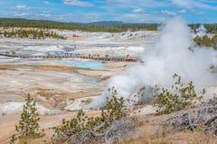 Leute, die auf hölzerne Gehwege in Norris Geyser Basin in Yellowstone Nationalpark gehen Stockbilder