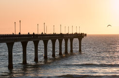 Leute, die auf neuem Brighton-Pier bei Sonnenaufgang fischen Stockfoto
