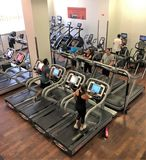 Leute, die auf Turnhallen-Tretmühlen trainieren lizenzfreies stockbild