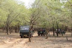 Leute, die begeistert auf Tigeranvisieren in Ranthambore-Park warten stockfoto