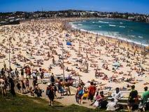 Leute, die an Bondi-Strand sich entspannen lizenzfreie stockfotografie