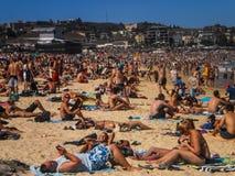 Leute, die an Bondi-Strand sich entspannen Stockfotografie