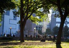 Leute, die in Central Park sich entspannen lizenzfreie stockfotos