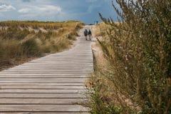 Leute, die in die Dünen auf der niederländischen Küste auf einer hölzernen Plattform gehen lizenzfreie stockbilder