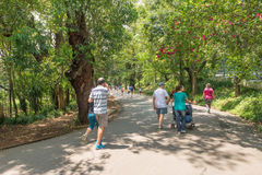 Leute, die den Aclimacao-Park in Sao Paulo genießen Lizenzfreie Stockfotografie