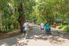 Leute, die den Aclimacao-Park in Sao Paulo genießen Lizenzfreie Stockfotos
