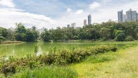 Leute, die den Aclimacao-Park in Sao Paulo genießen Lizenzfreies Stockbild
