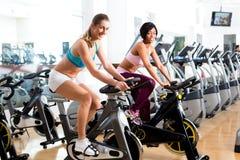Leute, die in die Turnhalle auf Fahrrädern spinnen Lizenzfreies Stockfoto