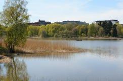 Leute, die ein Boot auf Toolo-Bucht in Helsinki rudern stockbild