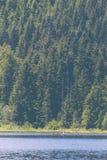 Leute, die ein kleines Boot in einem See mit einem schönen Wald im Hintergrund rudern lizenzfreie stockfotografie