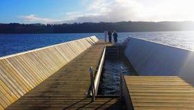Leute, die ein Schwimmen im kalten Wasser im Winter anstreben lizenzfreies stockfoto
