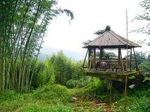 Leute, die eine Pause machen und in einem Pavillon in einem Bambuswald nachdem dem Wandern sich entspannen stockfoto