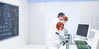 Leute, die in einem Chemielabor studieren stockfoto