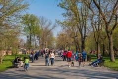 Leute, die in einen Park an einem sonnigen Tag gehen Stockbild