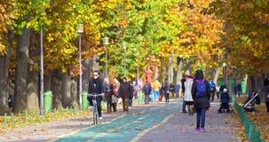 Leute, die einen Spaziergang machen und in Herastrau-Park auf Autumn Day trainieren stock footage