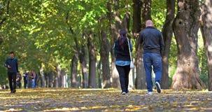 Leute, die einen Spaziergang machen und in Herastrau-Park auf Autumn Day trainieren stock video