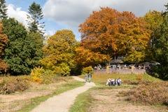 Leute, die Herbst in den Niederlanden genießen Stockfotos