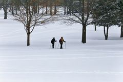 Leute, die im Schnee snowshoeing sind Lizenzfreie Stockbilder