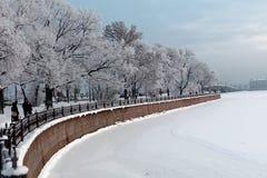 Leute, die im Winter St Petersburg, Russland stillstehen Stockfotografie