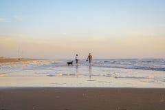Leute, die mit ihrem Hund auf dem Strand während des Sonnenuntergangs gehen Stockfoto