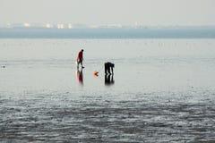 Leute, die nach Oberteilen auf dem Strand suchen Lizenzfreies Stockfoto