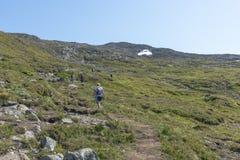Leute, die in Nationalpark in Norwegen gehen Stockfotos