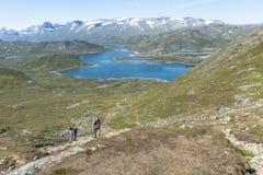 Leute, die in Nationalpark in Norwegen gehen Stockfoto