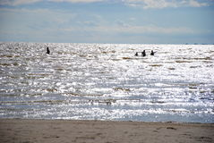 Leute in einem glänzenden Meer Stockfotografie