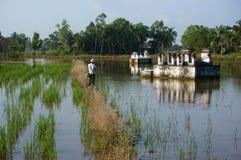 Leute entspannen sich durch Fischflussfische auf Reisfeld in Überschwemmung seaso Lizenzfreie Stockfotos