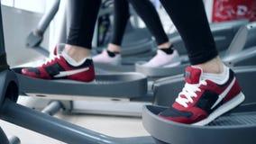 Leute führen Übung auf elliptischen Trainern im komplexen Sport durch stock video footage