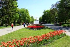 Leute gehen in den Park mit Blumenbeeten und Brunnen Lizenzfreies Stockfoto