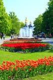 Leute gehen in den Park mit Blumenbeeten von Tulpen und von Brunnen Stockfotografie
