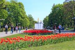 Leute gehen in den Park mit großen Bäumen und Brunnen Lizenzfreie Stockbilder