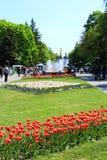 Leute gehen in den Park mit großen Bäumen und Brunnen Stockfotografie
