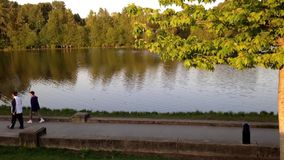 Leute gehen am Park nahe bei einem See stock footage