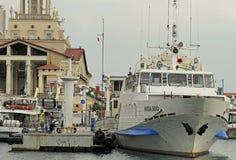 Leute gehen in Seehafen von Sochi, Russland Lizenzfreie Stockfotografie