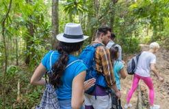 Leute gruppieren mit Rucksack-Trekking auf Forest Path Back Rear View, Mischungs-Rennjungen Männern und Frau auf Wanderungs-Touri stockfotos