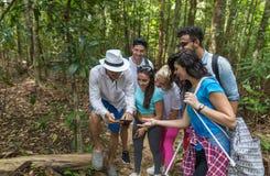 Leute gruppieren mit Rucksack-Trekking auf Forest Path With Giude Using-Zellintelligentem Telefon, Mischungs-Rennjungen Männern u stockbilder