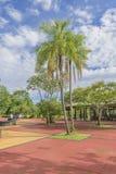 Leute am Iguazu-Park-Eingang Lizenzfreie Stockfotografie