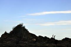 Leute im Felsen stockbilder