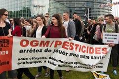Leute mit Fahne während der Demonstration gegen Monsanto und das transatlantique behandelten f Lizenzfreie Stockbilder