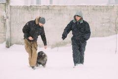 Leute nehmen an Hundetraining teil Keeshond-Hundespielen im Freien Lizenzfreie Stockfotos