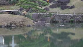Leute am Park in Tokyo, Japan stock video footage