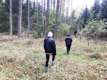 Leute, Pilzpflücker in der warmen Kleidung gehen in eine Wanderung durch den Herbstwald mit Bäumen in der Natur entlang dem Gras stockfotografie