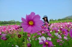 Leute reisen und Porträt auf dem Kosmos-Blumen-Gebiet von Jim Thomps Lizenzfreie Stockfotos